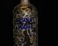 absolut-monkey